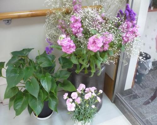 岡山の特別養護老人ホーム【愛光苑】玄関は花でいっぱい3